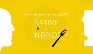 native-app-300x175
